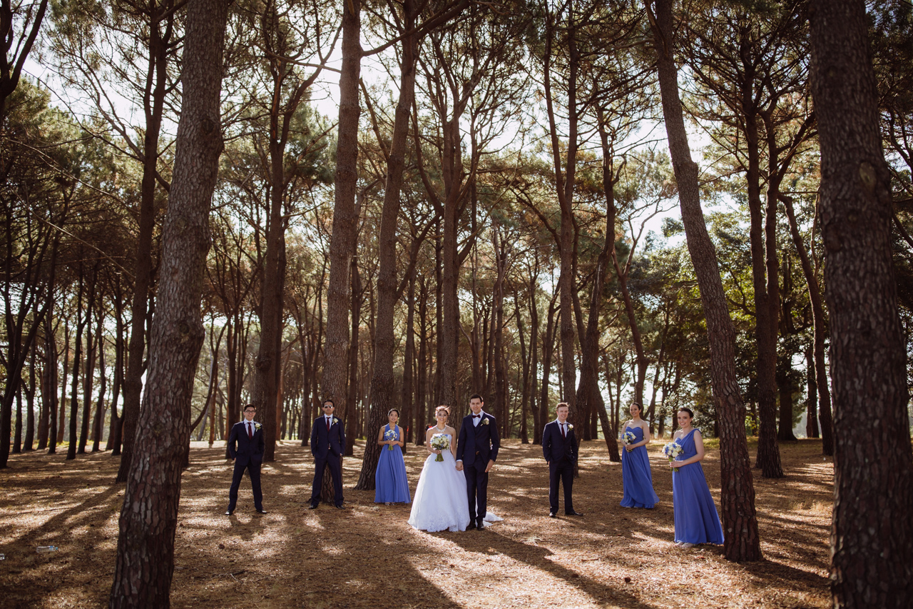 A bride and groom and their bridal party scattered throughout an area of tall trees