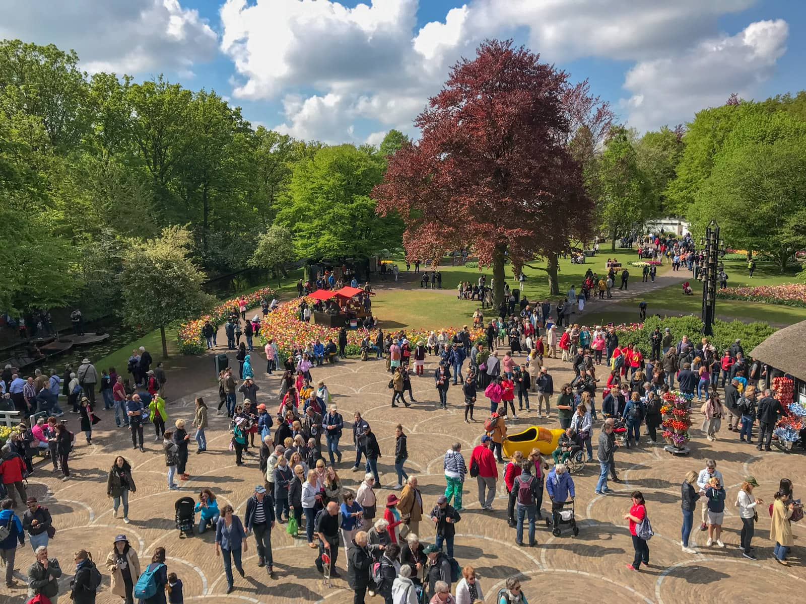 A high vantage view of a crowd of people scattered in the open walkable area of a park. In the distance some arrangements of tulips can be seen, and the trees in the park are very green apart from one dark red one in the centre. It is a relatively sunny day
