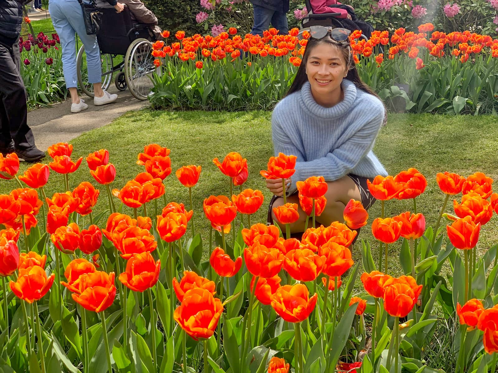 A woman wearing a blue sweater crouching behind several rows of planted orange tulips.