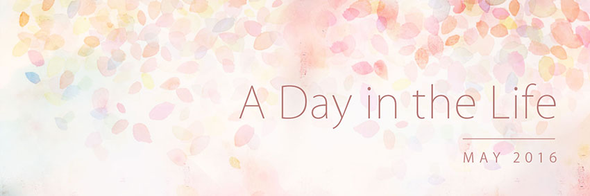 A Day in the Life: May 2016 Banner