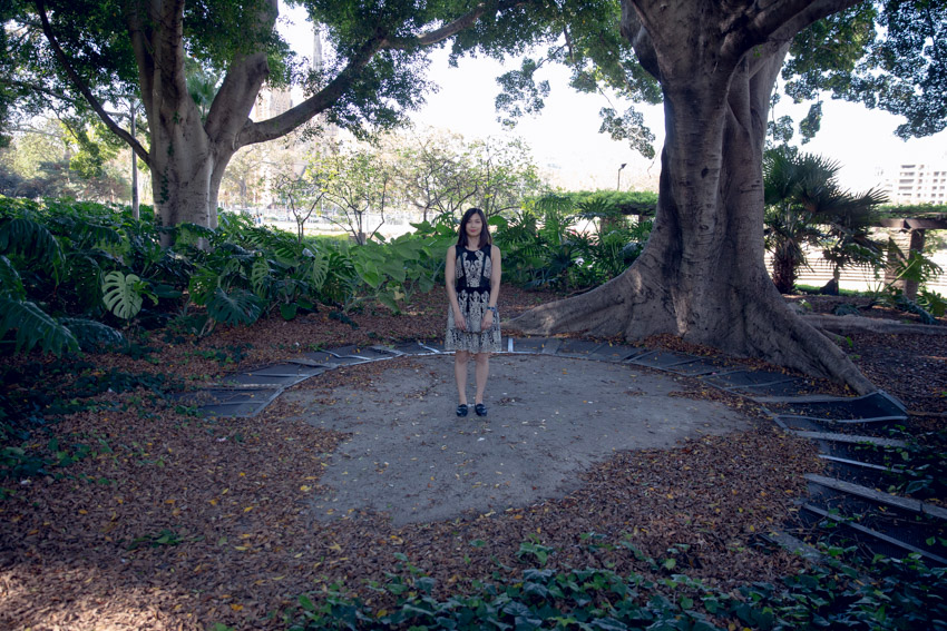 A woman standing in a circle-shaped area of concrete at the base of a large tree trunk. The area is bordered by a series of metal grates and covered in fallen brown leaves. There is some greenery in the background.