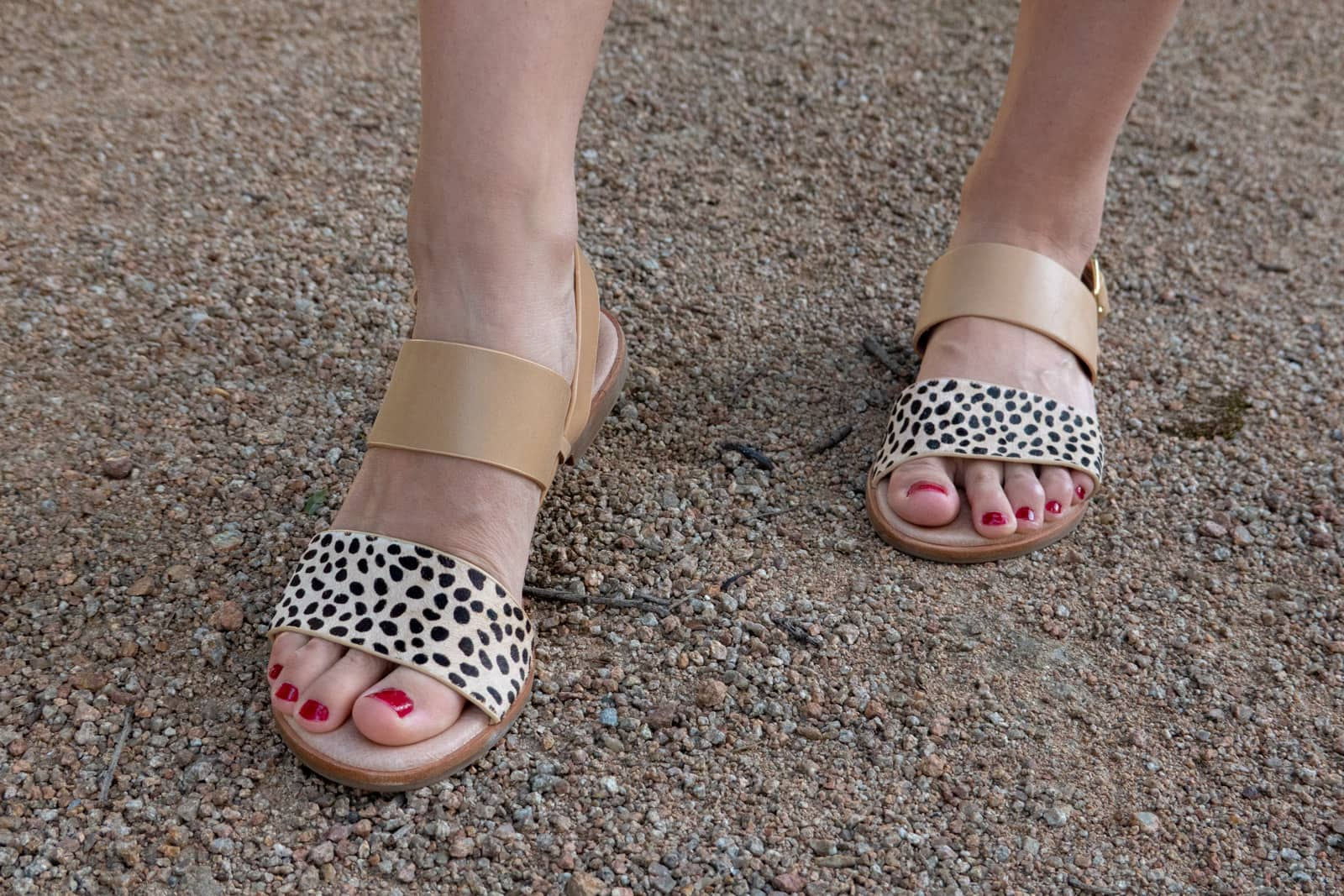 Close up of a woman's feet, wearing tan sandals with a strap that has animal print. Her toenails are painted in a dark magenta shade.