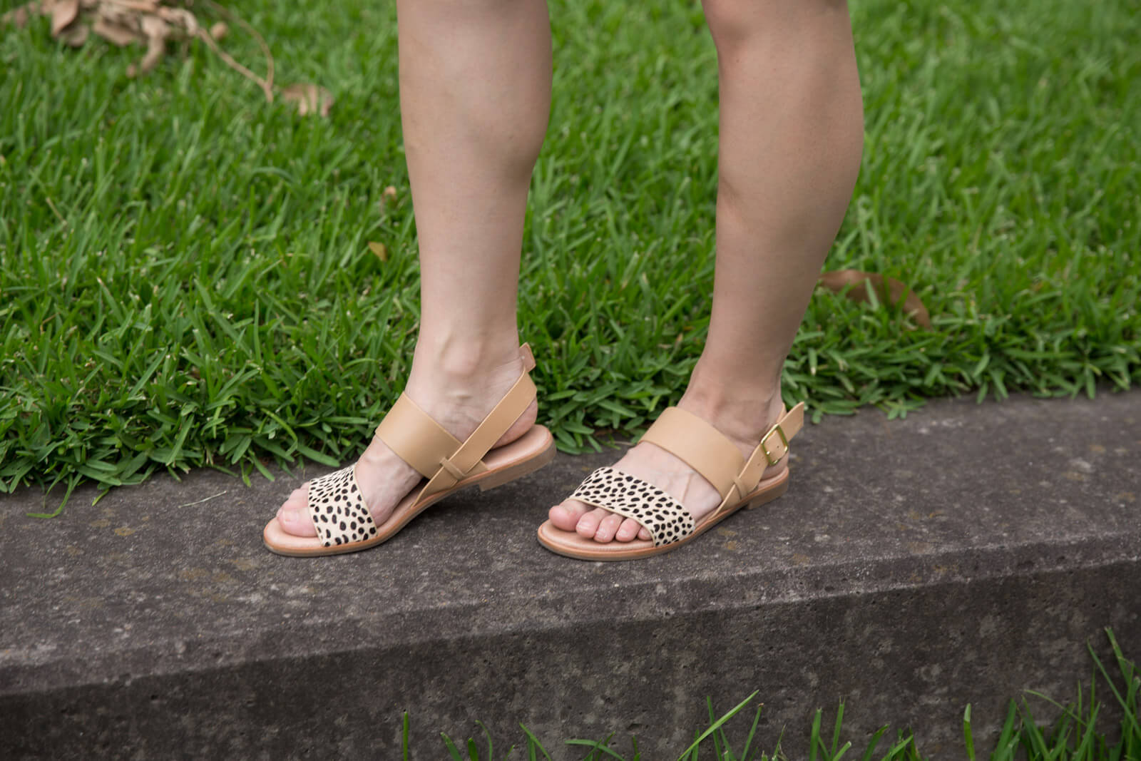 A close up of a woman wearing tan sandals with spotted animal print on the section over the toes