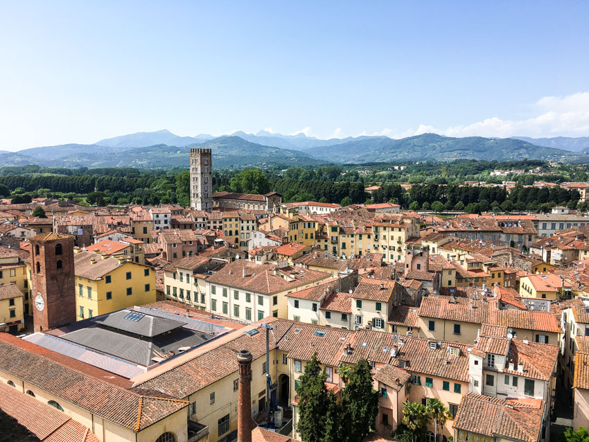 Lucca from the top of the Guinigi Tower