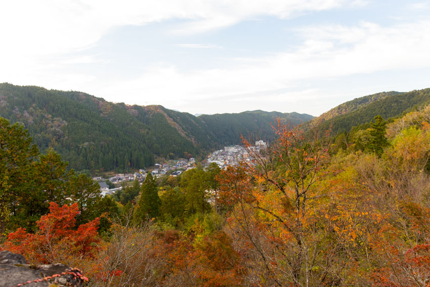 Trees with red and yellow leaves in the foreground, with a view of the city of Gujo