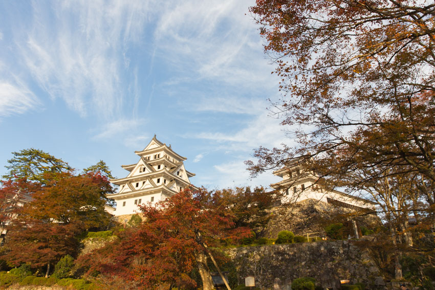 The top of Gujo-Hachiman castle with some autumn trees in view