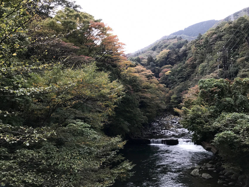 A view of the greenery around some of Hakone, with a river below waterways