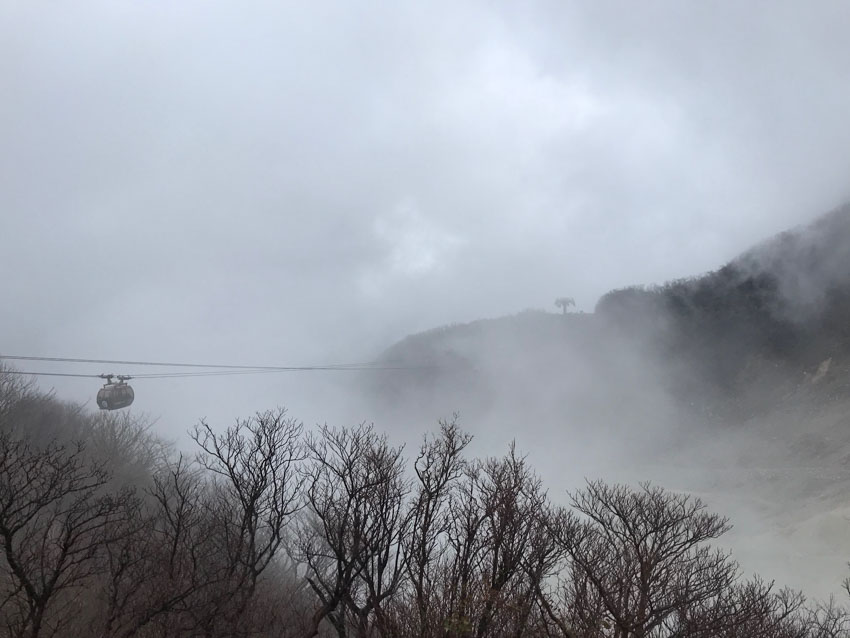 The foggy view of Hakone, with withered trees in the foreground