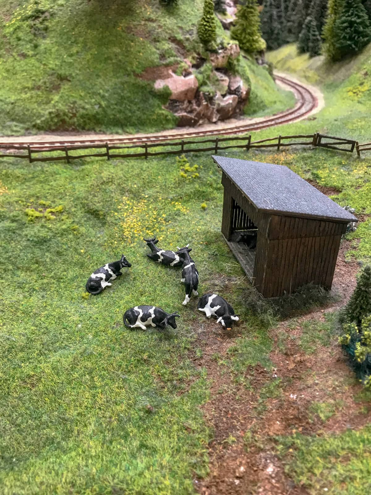 A close-up view of some black and white model cows on grass, part of a miniature model railway.