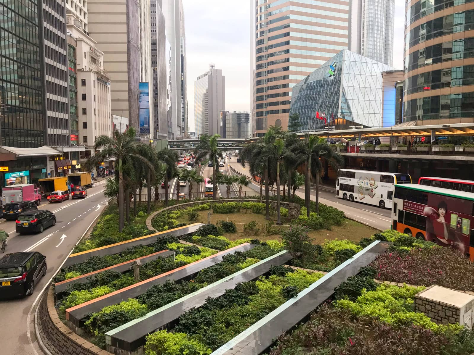 A business district of Hong Kong, where there is a busy road of vehicles. In the centre of the frame is a garden that appears to be well groomed and filled with some palm trees and shrubs.