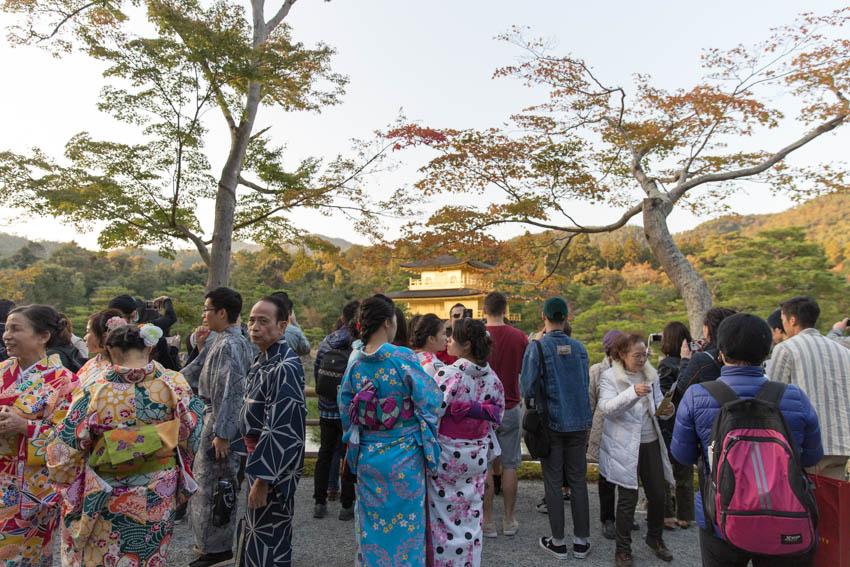 Some girls dressed in colourful yukata (Japanese traditional dress) with the golden pavilion in the background
