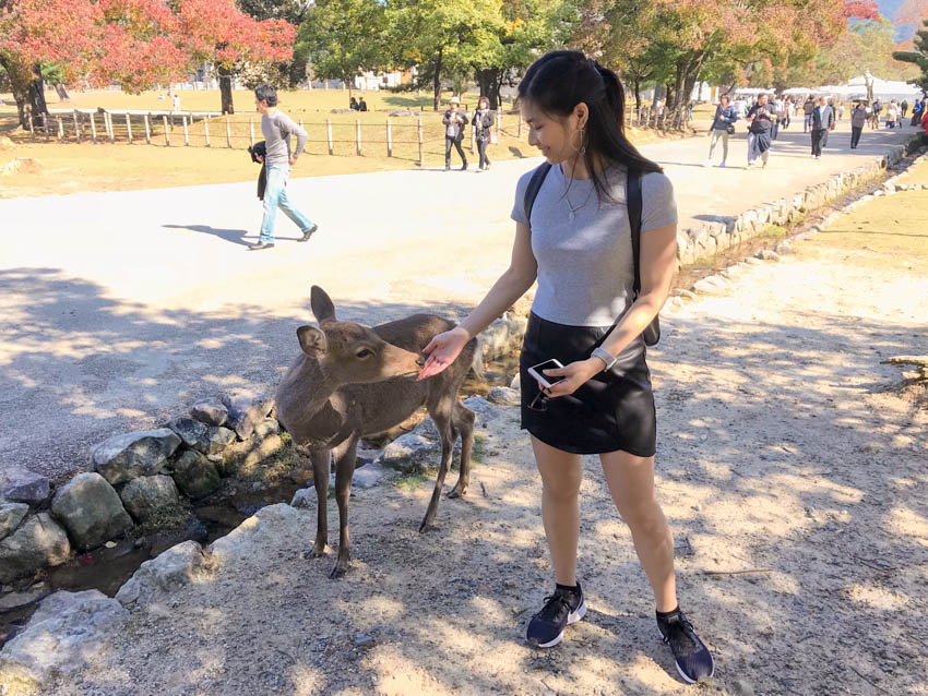 Me holding my (empty) hand out to a deer, who is nibbling at it