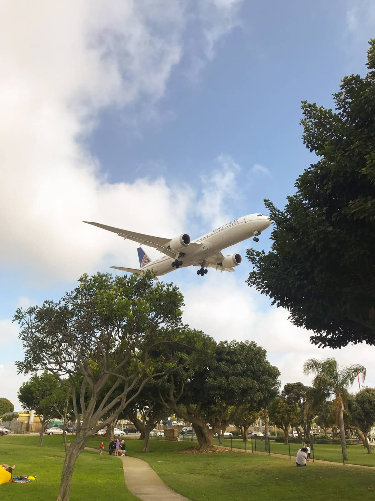 A view from a small park with a few trees and paths, with an airplane flying over, quite close to the ground