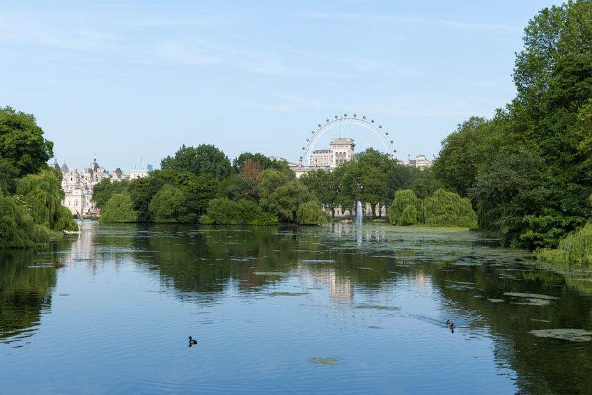 A lake in St James Park