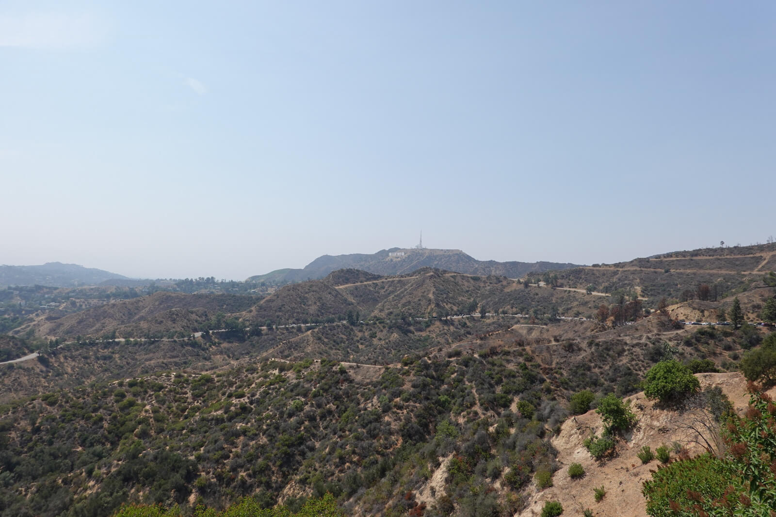 "A hilly view with lots of trees and dirt, on a clear day. In the distance a ""Hollywood"" sign can be seen"