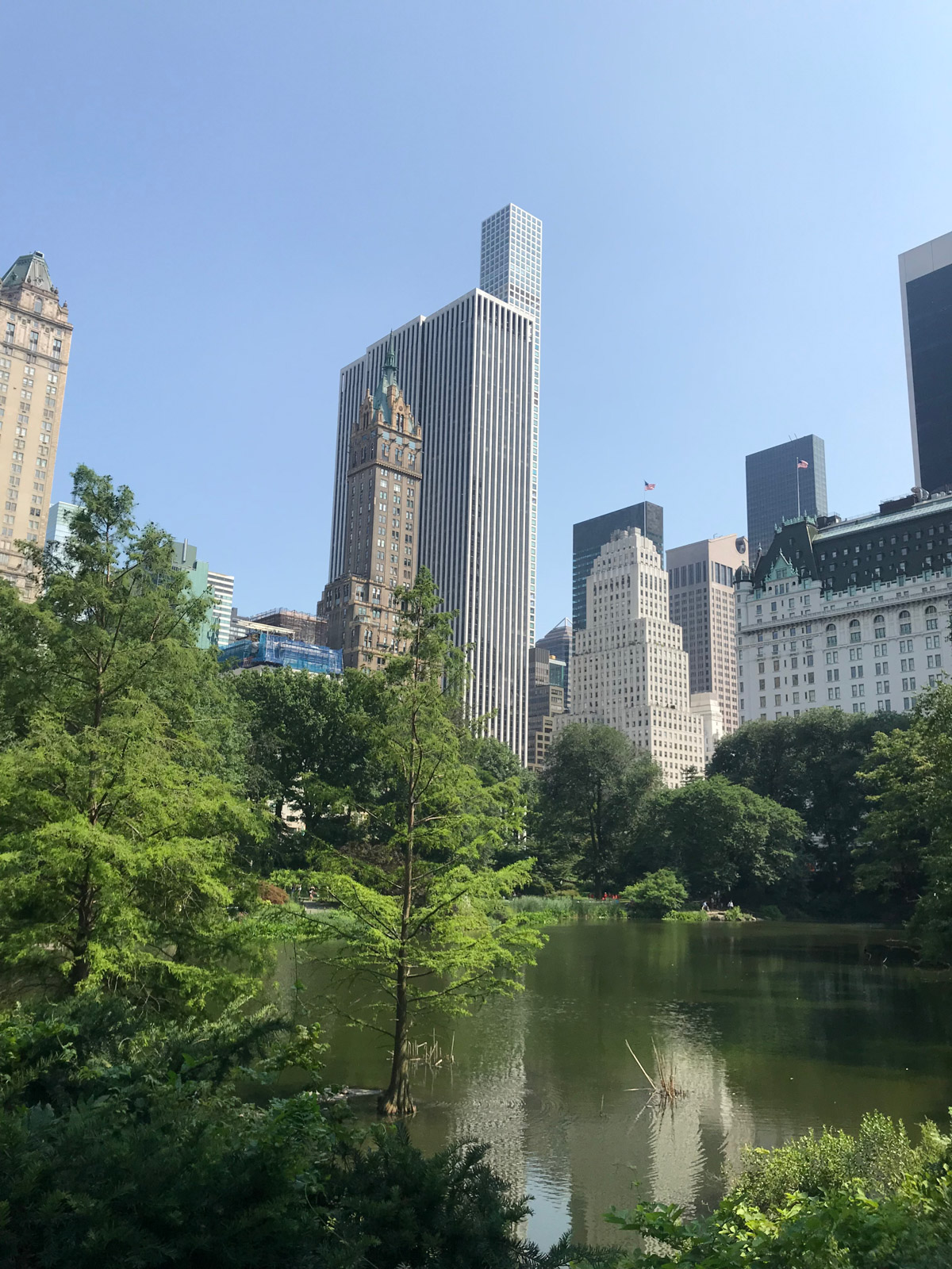 A portrait style photo, same view as the previous photo, taken from inside a park, with many trees and a pond in the foreground, and the city in the background