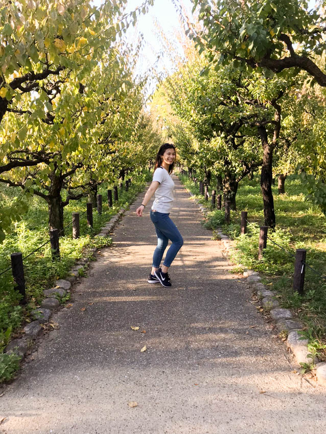 A path in the plum tree grove with me posing in it with my knees slightly bent