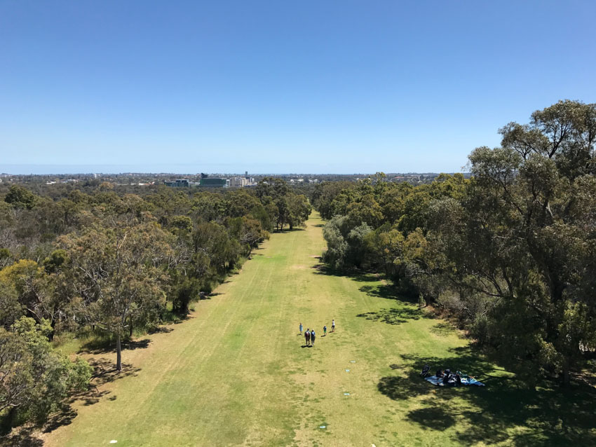 A view of the green lawn from on top of the DNA tower