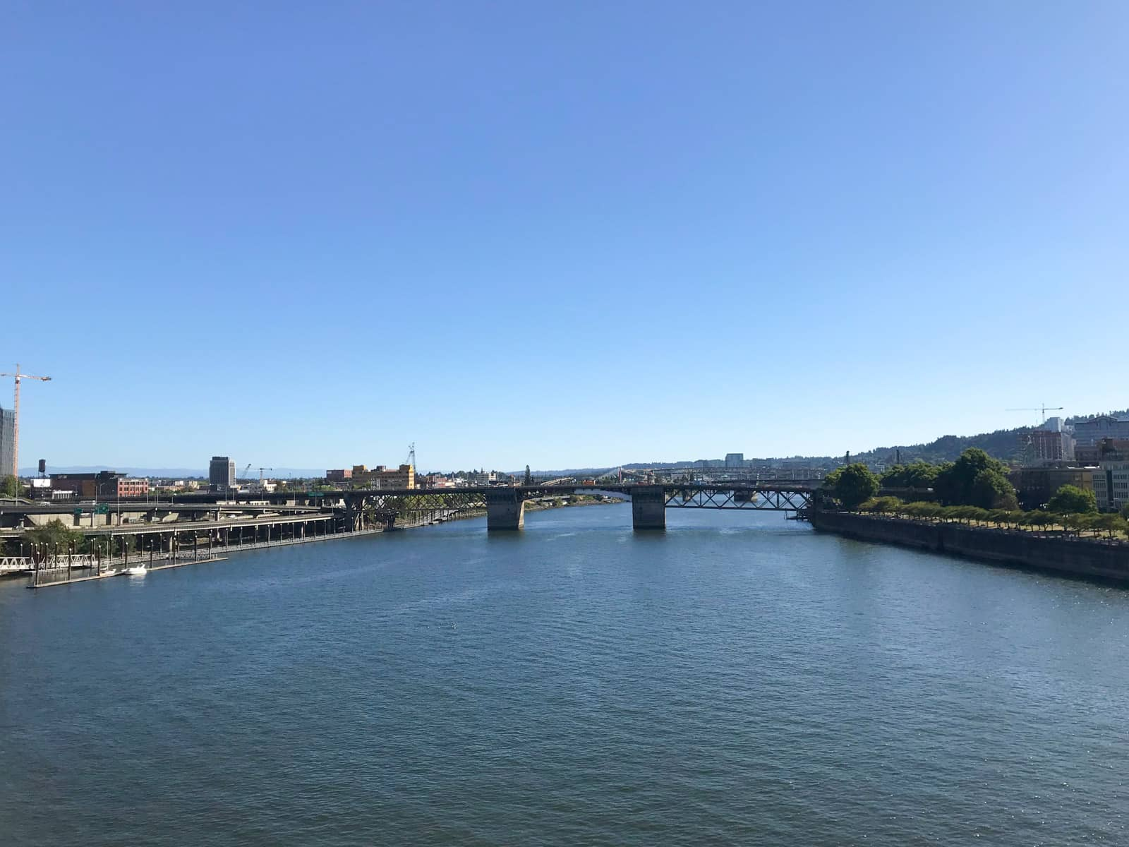 A river with a bridge running across it, seen from a point in the middle of the river's width. It is a bright day with blue skies