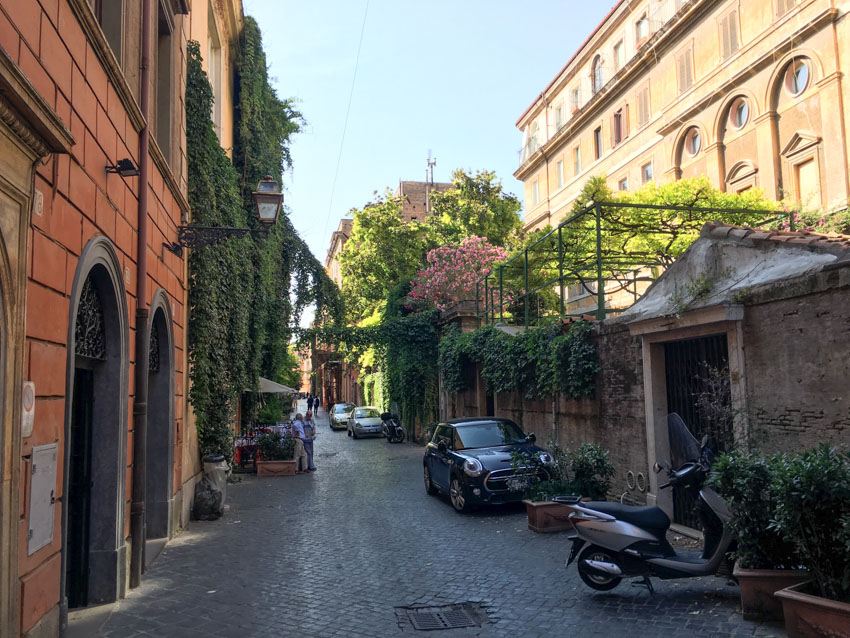 The lane with some plants growing down the buildings