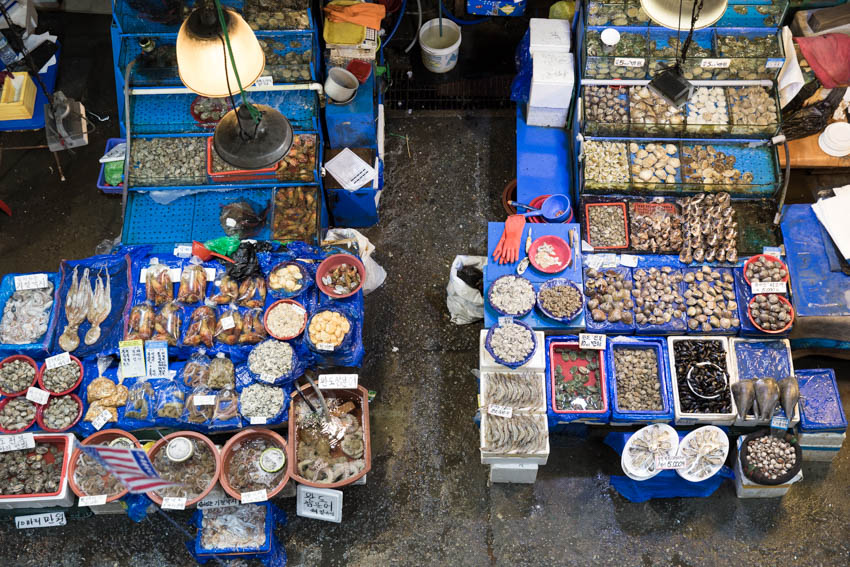 A view of the fish market from above