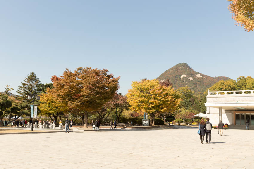 Wide view of the walkway with mountains in the background and trees in the foreground