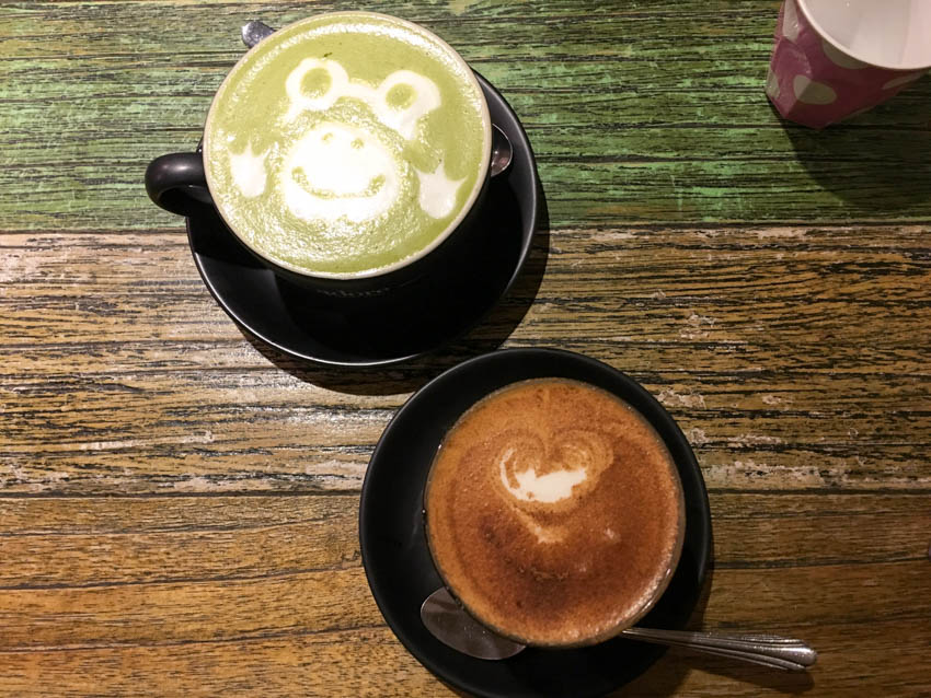 Soy chai latte and green tea latte