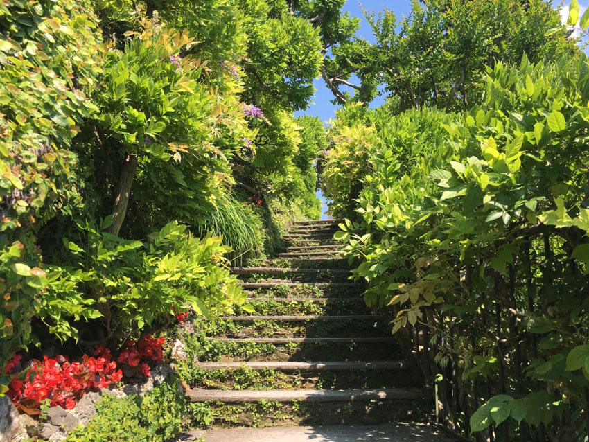 A set of stairs at the villa, covered by a lot of bright foliage