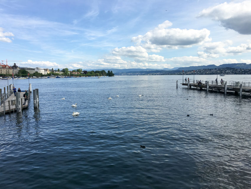Some swans and part of the pier in Zurich