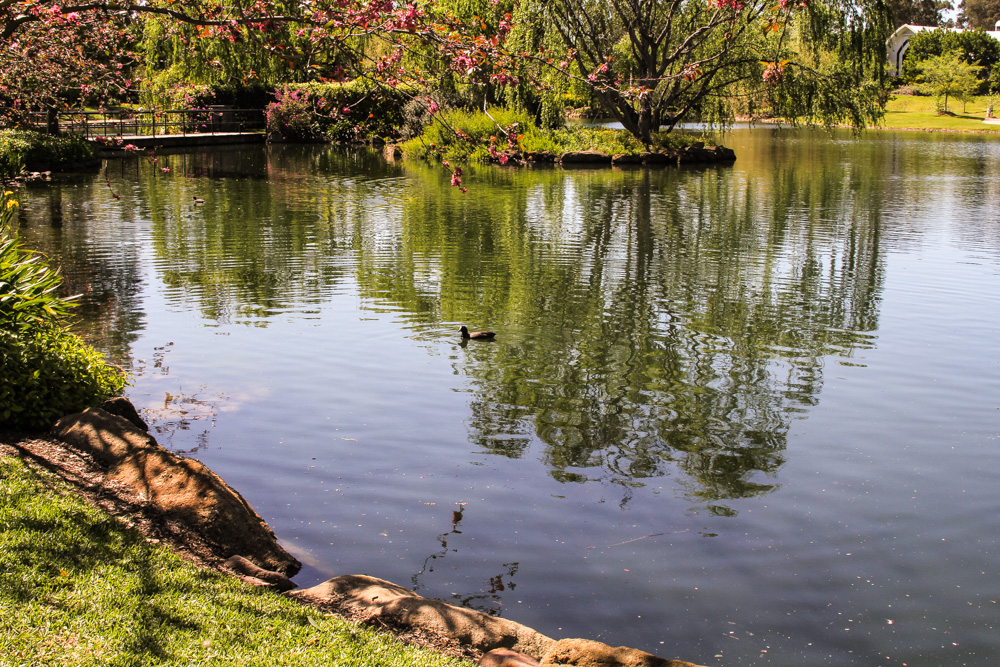 A pretty lake