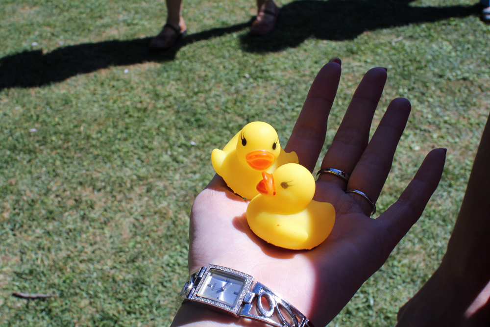They gave out free squeaky ducks. Apparently the mascot was for a musical.