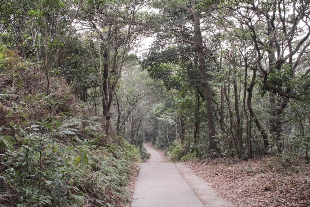 Wisdom trail