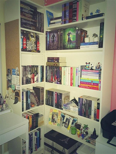 Sydney's bookshelf