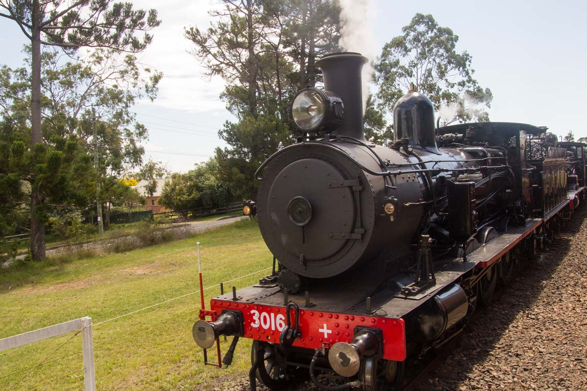 3016 locomotive from Canberra Railway Museum