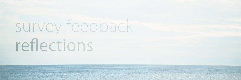 Survey feedback reflections